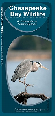Chesapeake Bay Wildlife By Kavanagh, James/ Leung, Raymond (ILT)
